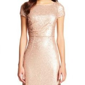 Adrianna Papell Dresses - Adrianna Papell Blush Sequin Dress 14 (NWOT)